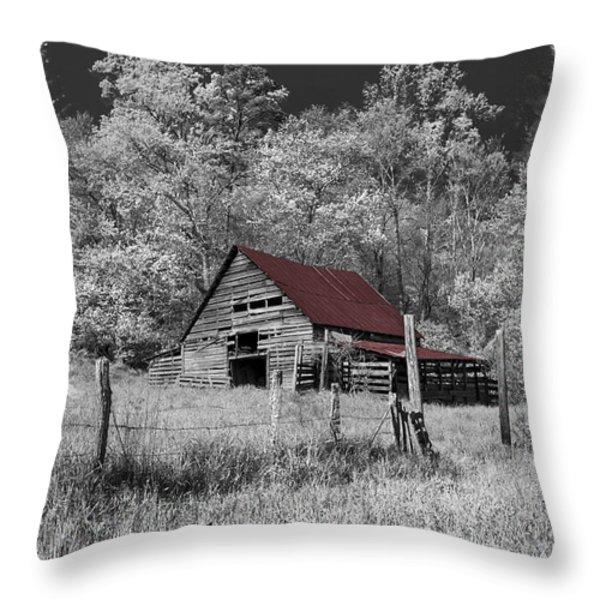 Big Red Throw Pillow by Debra and Dave Vanderlaan