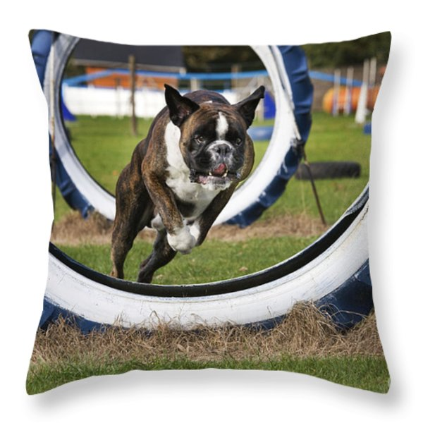 Boxer Dog Throw Pillow by Johan De Meester