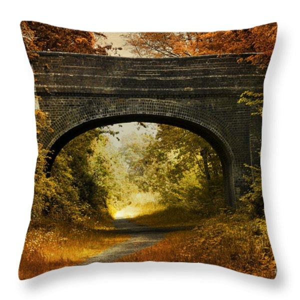 Bridge Throw Pillow by Svetlana Sewell