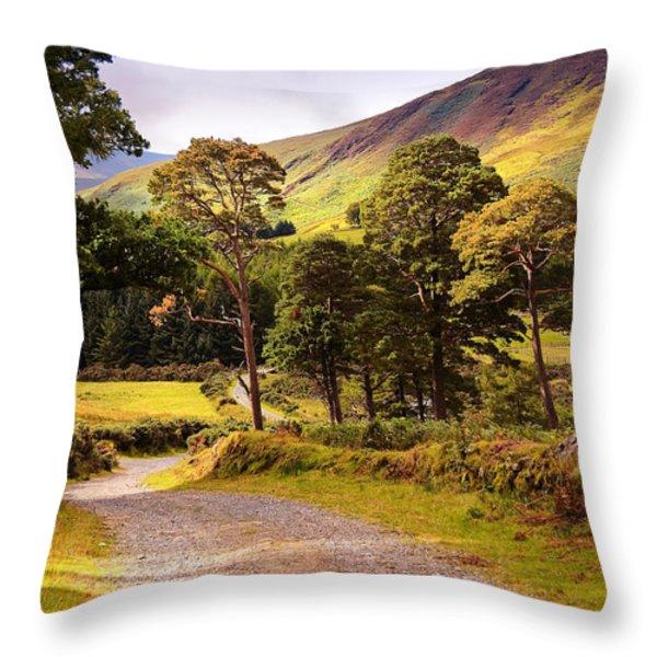Celtic Spirit. Wicklow  Mountains. Ireland Throw Pillow by Jenny Rainbow