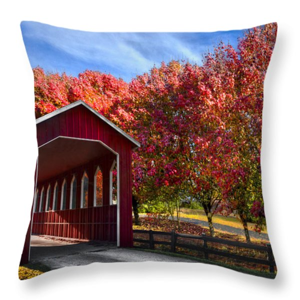Country Lane Throw Pillow by Debra and Dave Vanderlaan