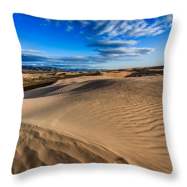 Desert Texture Throw Pillow by Chad Dutson
