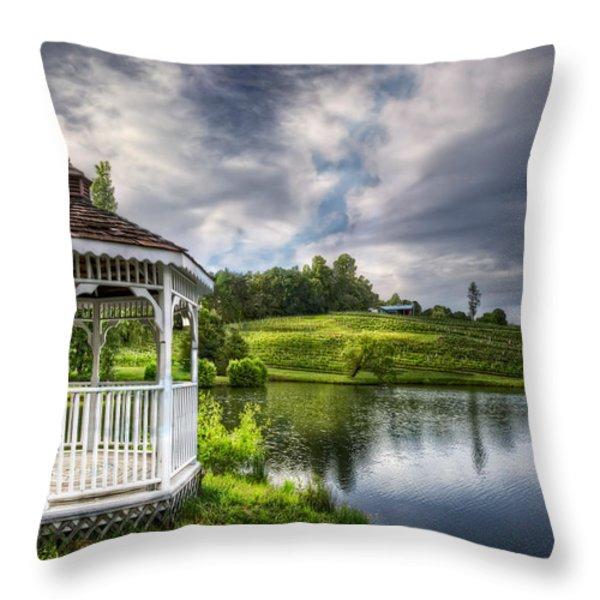 Dreaming Throw Pillow by Debra and Dave Vanderlaan