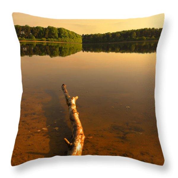 Drift Wood Throw Pillow by Svetlana Sewell