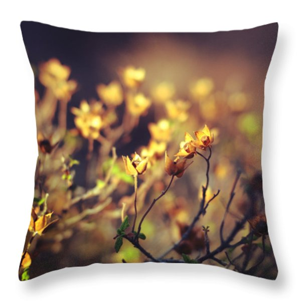 Every Desire Throw Pillow by Taylan Soyturk