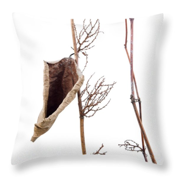 Fallopia Japonica Throw Pillow by Bernard Jaubert