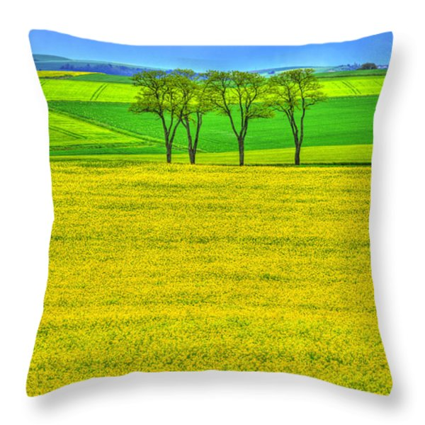 Fields Of Dreams Throw Pillow by Midori Chan