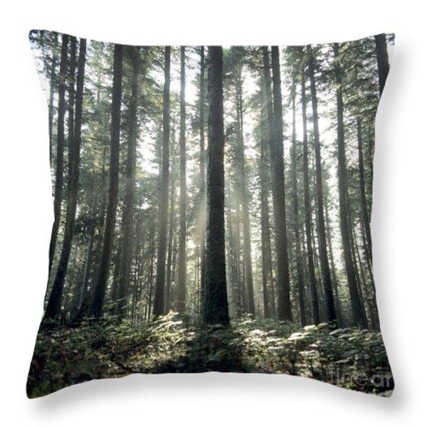 Forest Throw Pillow by Bernard Jaubert