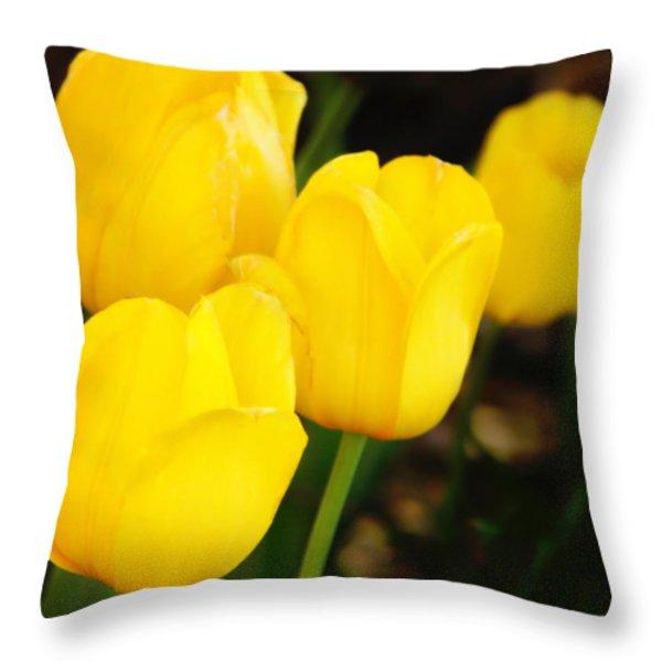Golden Cups Throw Pillow by Joan Bertucci