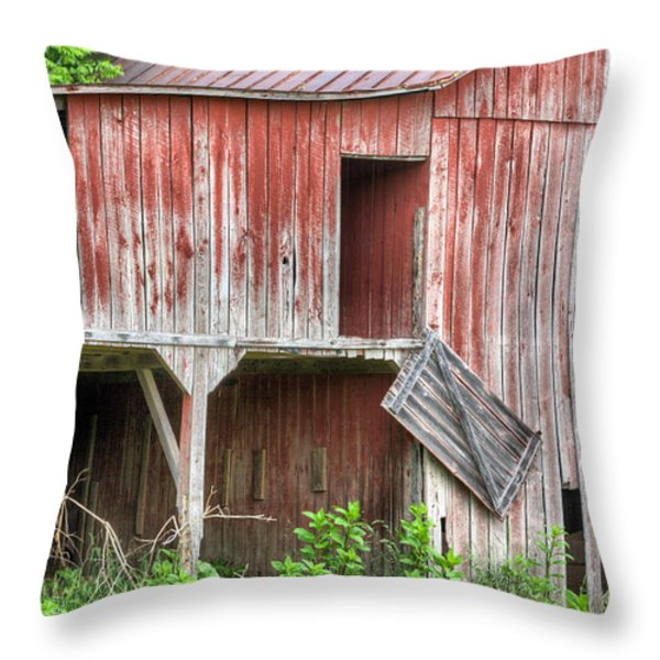 Hanging by a Moment  Throw Pillow by JC Findley
