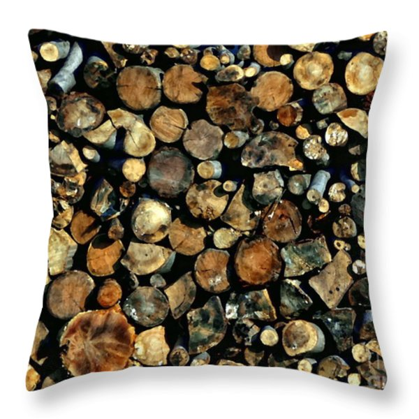Hunkering Down Throw Pillow by Andrea Kollo
