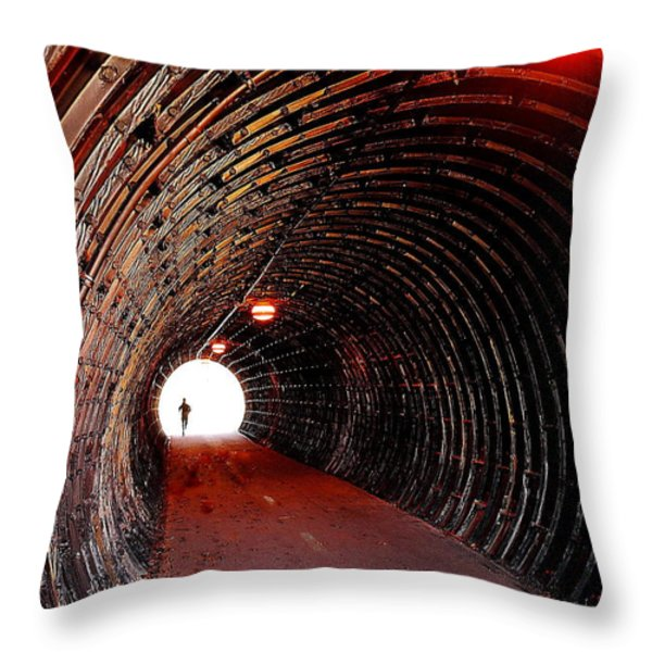 In The Spotlight Throw Pillow by Frozen in Time Fine Art Photography