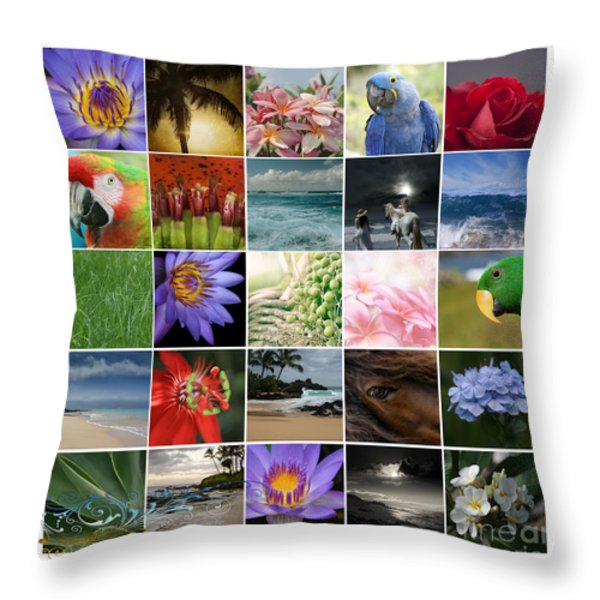 Journey Of Discovery Throw Pillow by Sharon Mau