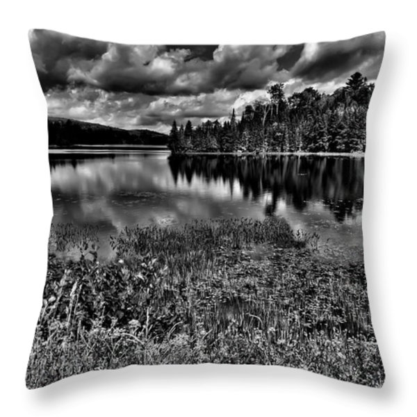Lake Abanakee in the Adirondacks Throw Pillow by David Patterson