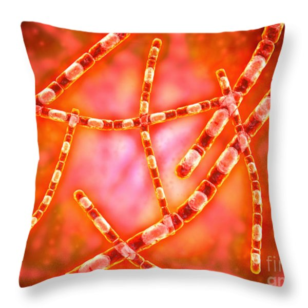 Microscopic View Of Anthrax Throw Pillow by Stocktrek Images