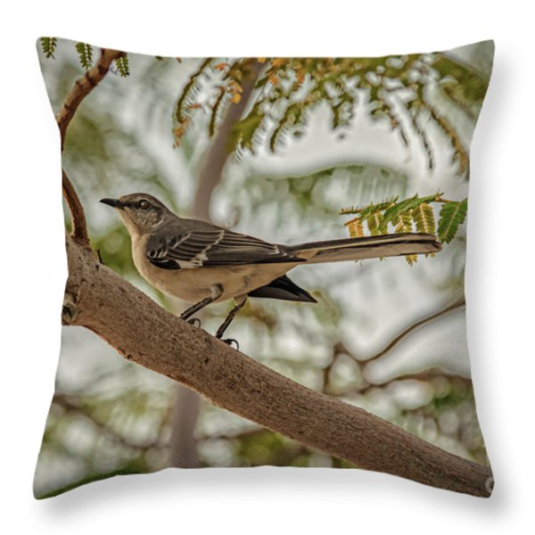Mockingbird Throw Pillow by Robert Bales