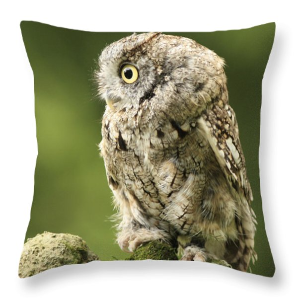 Moments of Reflection Throw Pillow by Inspired Nature Photography By Shelley Myke