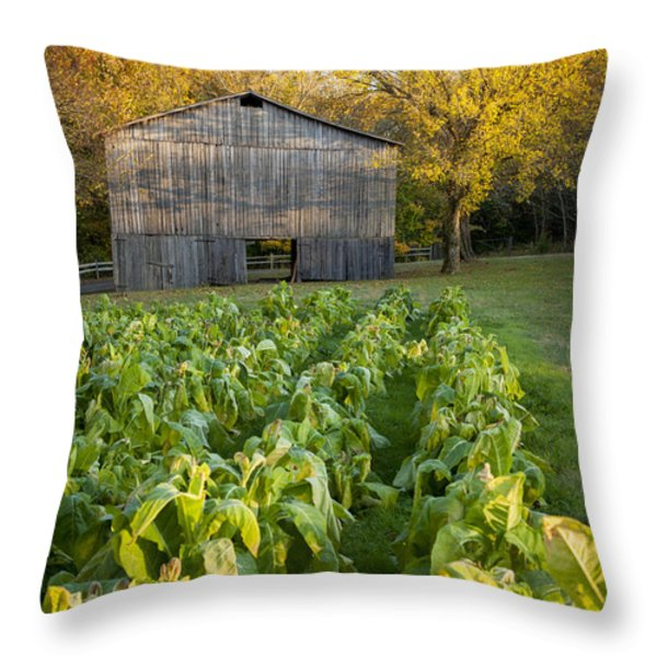 Old Tobacco Barn Throw Pillow by Brian Jannsen