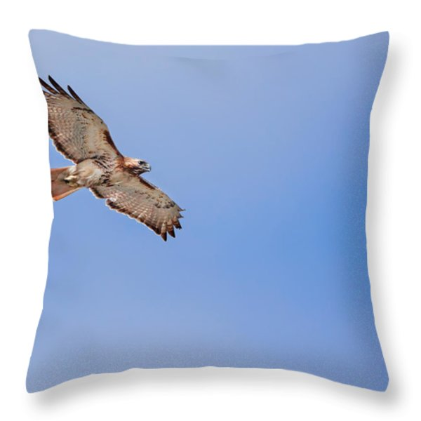 Out Of the Blue Throw Pillow by Bill  Wakeley