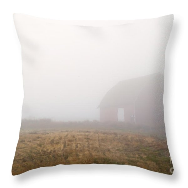 Out Of The Fog Throw Pillow by Mike  Dawson