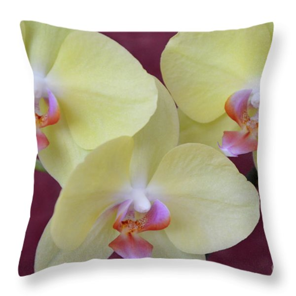 Phalaenopsis Fullers Sunset Orchid - No 2 Throw Pillow by Mary Deal