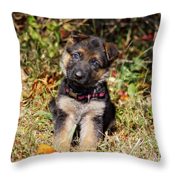 Pretty Puppy Throw Pillow by Sandy Keeton