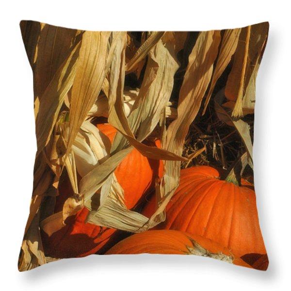 Pumpkin Harvest Throw Pillow by Joann Vitali