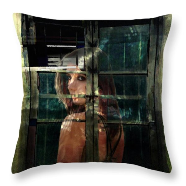 Reflections Throw Pillow by Gun Legler