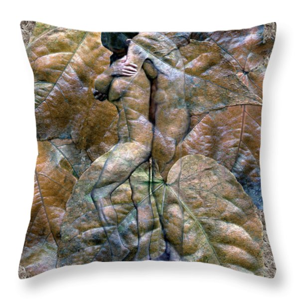 Sheltered Throw Pillow by Kurt Van Wagner