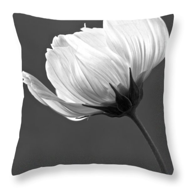 Simply Beautiful In Black And White Throw Pillow by Penny Meyers
