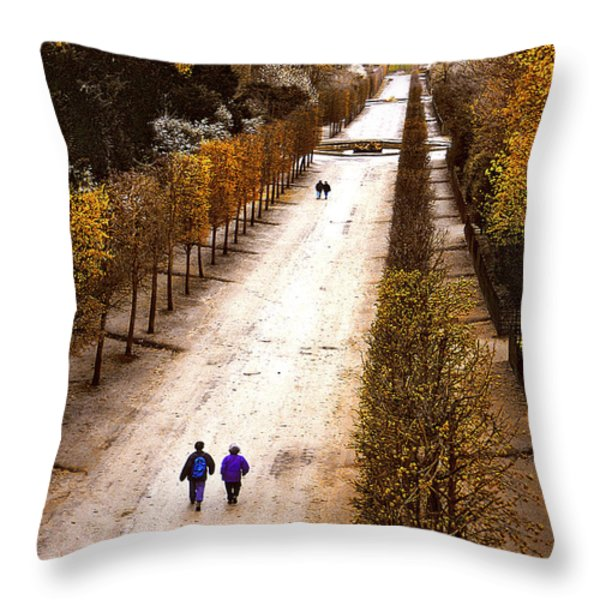 Strolling Versailles Throw Pillow by Barbara D Richards