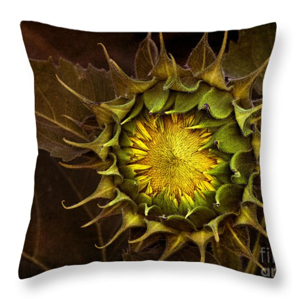 Sunflower Throw Pillow by Elena Nosyreva