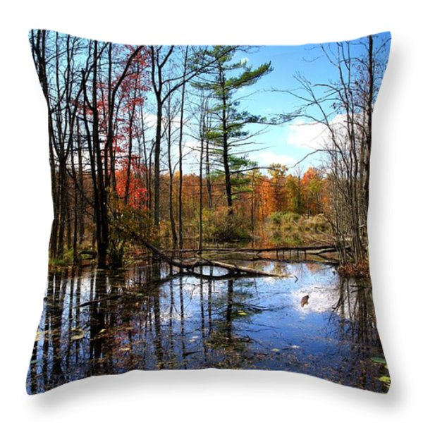 The Beautiful Fall Throw Pillow by Paul Ge
