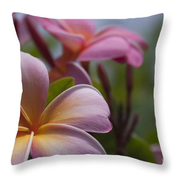 The Garden Of Dreams Throw Pillow by Sharon Mau