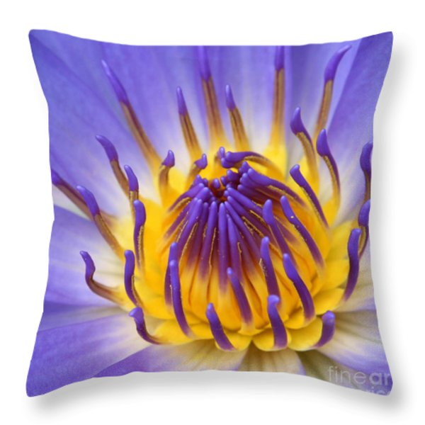 The Lotus Flower Throw Pillow by Sharon Mau