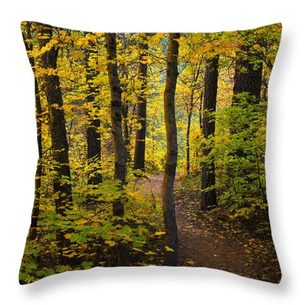 The Magic Forest  Throw Pillow by Saija  Lehtonen