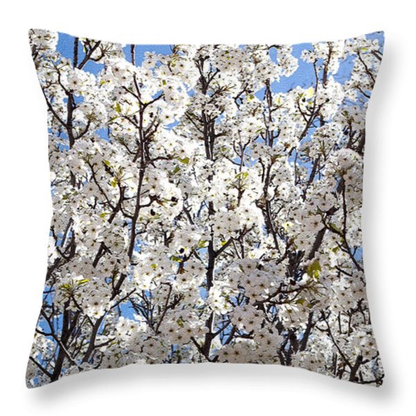 To The Sun Throw Pillow by Roselynne Broussard