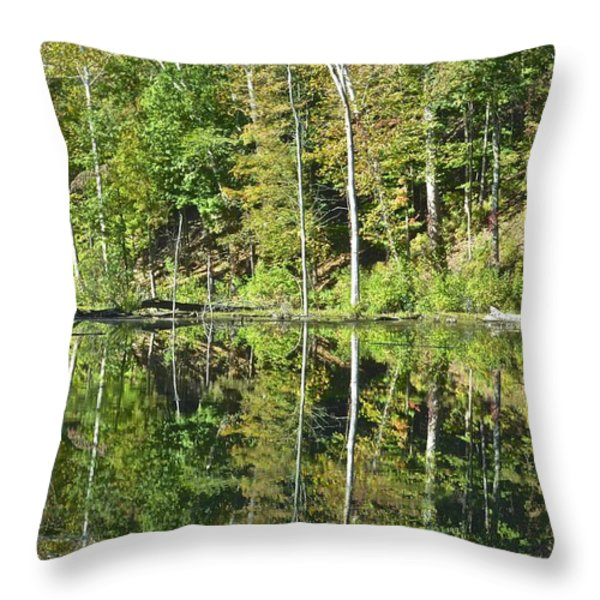 Two of a Kind Throw Pillow by Frozen in Time Fine Art Photography
