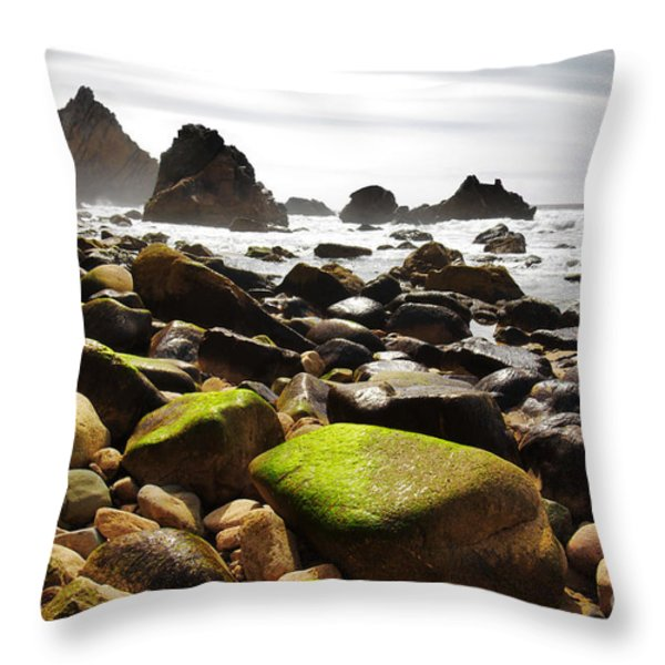 Ursa Beach Throw Pillow by Carlos Caetano
