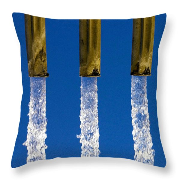 Water Throw Pillow by Fabrizio Troiani