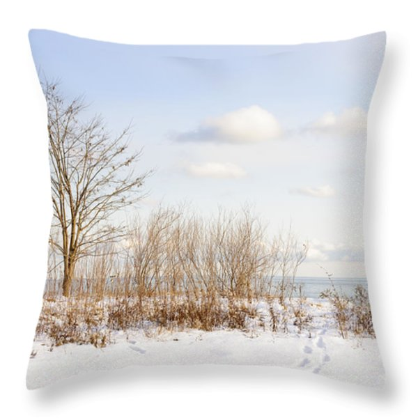 Winter shore of lake Ontario Throw Pillow by Elena Elisseeva