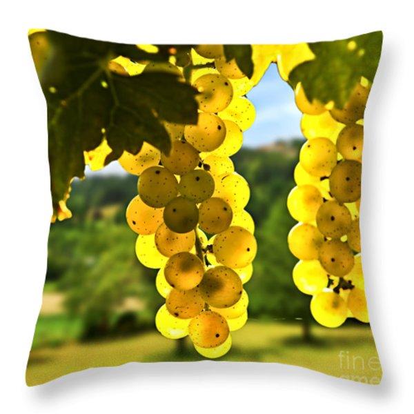 Yellow Grapes Throw Pillow by Elena Elisseeva