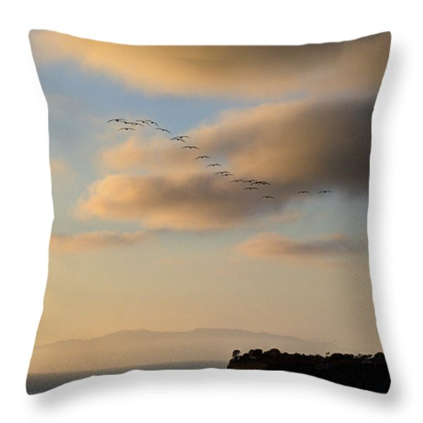 22 Throw Pillow by Joe Schofield