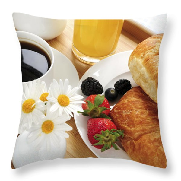 Breakfast  Throw Pillow by Elena Elisseeva