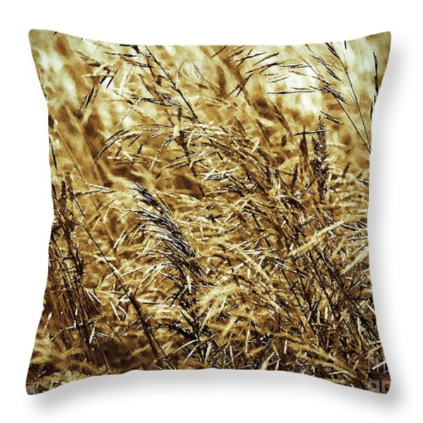 Brome Grass In The Hay Field Throw Pillow by J McCombie