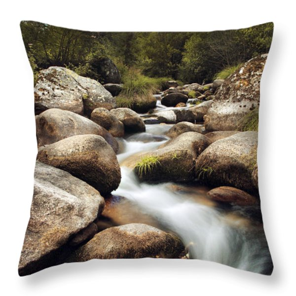 Creek Throw Pillow by Carlos Caetano