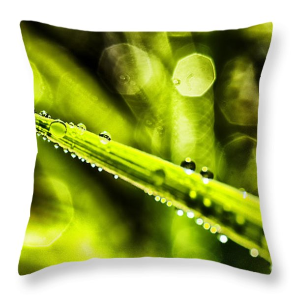 Dew on Grass Throw Pillow by Thomas R Fletcher