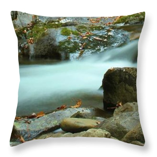 Flow Throw Pillow by Dan Sproul