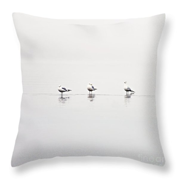 3 Gulls Throw Pillow by Sylvia Cook