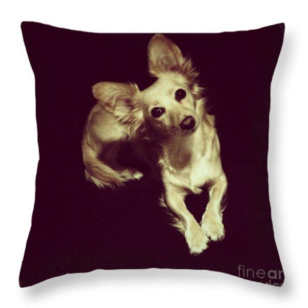 Laika Throw Pillow by Elena Nosyreva